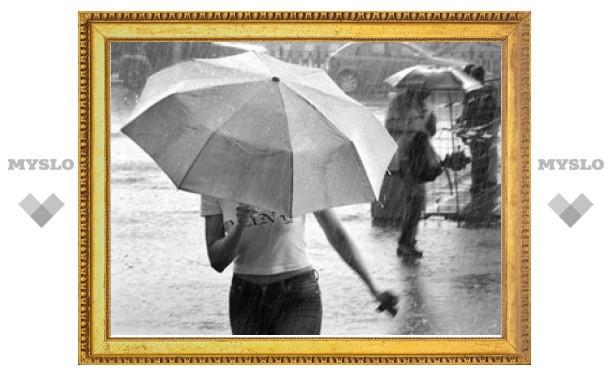 Тулу снова ждут дождливые выходные