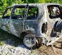 Труп в сгоревшей машине под Алексином: владелец машины установлен
