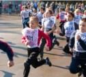 Более 3000 туляков приняли участие в «Кроссе нации – 2014»