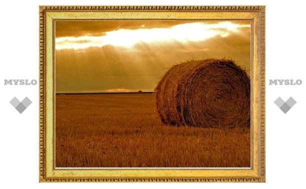 В Плавском районе пожар уничтожил 110 тонн сена