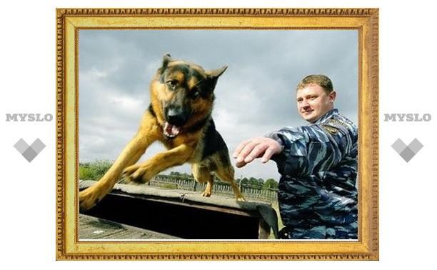 В Новомосковске прошли соревнования служебных собак