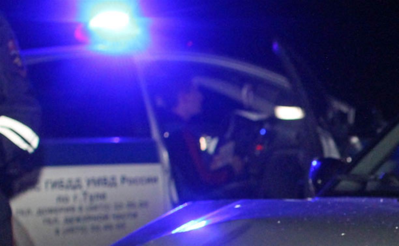 В Тульской области в ДТП с лосем погибли два человека