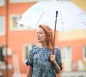 Выходные в Туле будут прохладными и дождливыми
