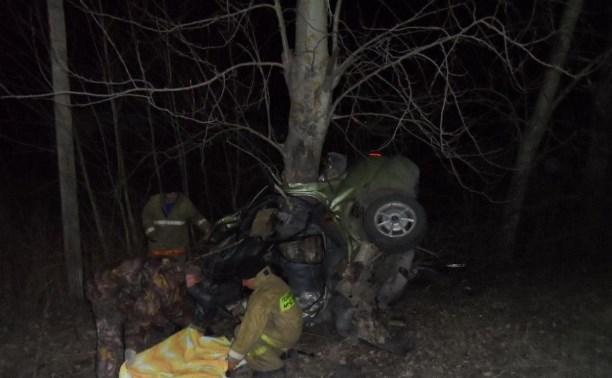 Под Белёвом двое мужчин разбились насмерть, врезавшись в дерево