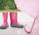 Предстоящая неделя в Туле будет дождливой и теплой
