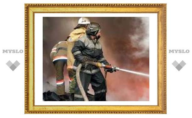 Пожарные спасли тулячку