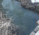 Тульская администрация проверила «багровый ручей» рядом с поселком Рассвет