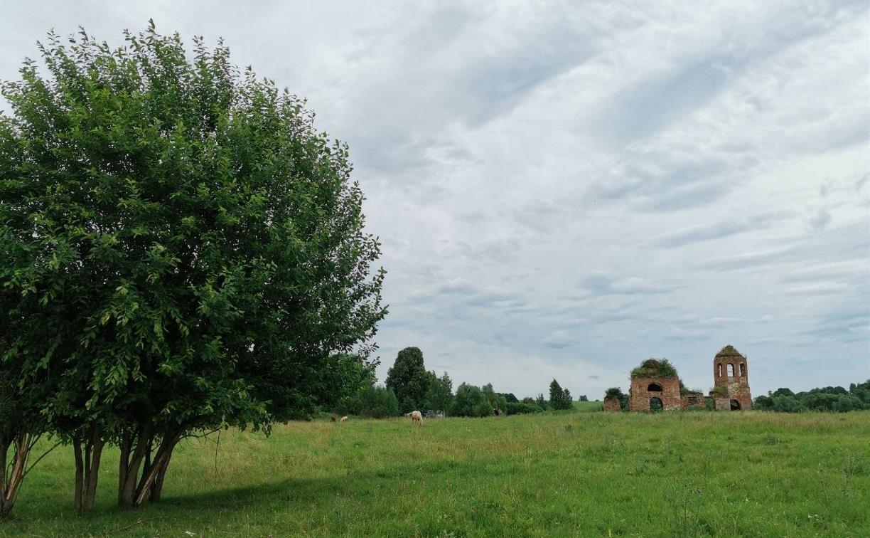 Погода в Туле 23 июля: облачно, сухо, до +22