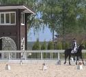 Под Тулой пройдет фестиваль по конному спорту