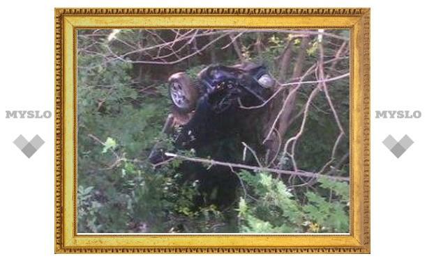 Под Тулой машина вылетела с дороги и повисла на деревьях