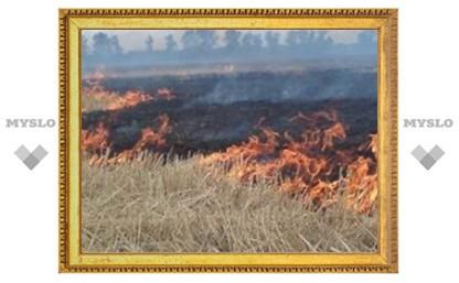 Под Тулой горит урожай