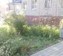 В Туле на улице Металлургов женщина выпала с балкона 5-го этажа и осталась жива