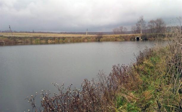 В пруду под Тулой нашли убитого мужчину