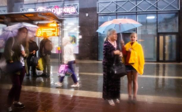 Погода в Туле 13 июля: мокро, ветрено и прохладно