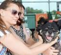 В Туле пройдет благотворительный фестиваль помощи животным: полная афиша