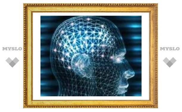 Ученые: мозг самоубийцы генетически отличается от мозга обычного человека