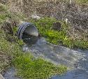 Экологическая катастрофа в Большой Туле: канализация со всего поселка сливается к жилым домам