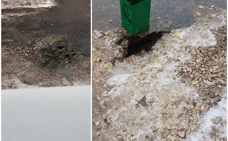 Как с помощью елки и мусорного ведра устранить провал грунта: лайфхак из Венева