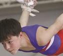 В Туле завершились соревнования по спортивной гимнастике