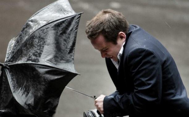 МЧС предупреждает: в Туле ожидается гроза и сильный ветер