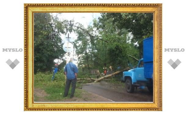 На ликвидацию последствий урагана в Алексине выделят 18 миллионов рублей