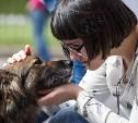 В Туле состоится благотворительный фестиваль помощи животным