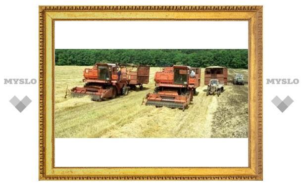 Тула соберет рекордный урожай?