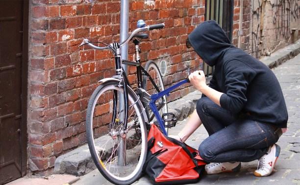 В Новомосковске 26-летний безработный украл велосипед стоимостью 70 тысяч рублей