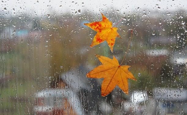 Погода в Туле 22 октября: тепло, облачно, небольшой дождь