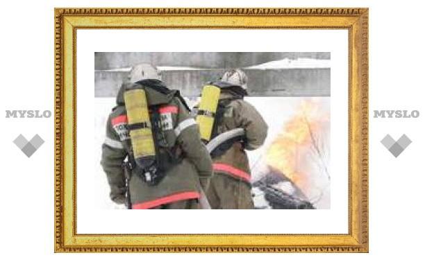В Каменском районе сгорели двое человек