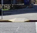В этом году 117 дорог Тулы станут доступнее для людей с ограниченными возможностями