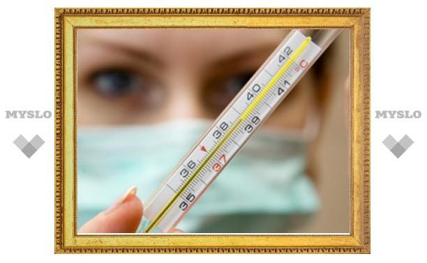 Тулякам расскажут, как не заболеть гриппом и ОРВИ