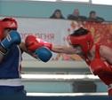 Боксеры Тульской области определили сильнейших в регионе