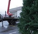 Новогодняя елка на главной площади Тулы будет готова к 1 декабря