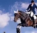Избирком проведет конные соревнования в Прилепах