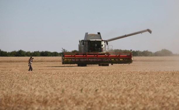 Владимир Груздев рассказал Дмитрию Медведеву об успехах аграрной политики в Тульской области