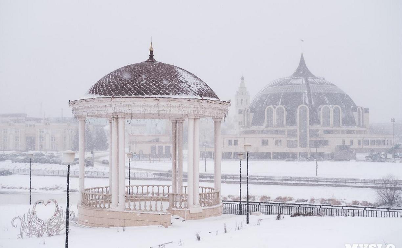 На Тулу надвигаются снегопад и метель