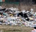 На рекультивацию несанкционированной свалки в Судаково потратят около 11 млн рублей