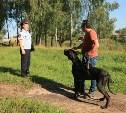 В Пролетарском парке прошёл рейд против незаконного выгула собак