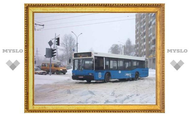 В Новогоднюю ночь в Туле будет работать общественный транспорт