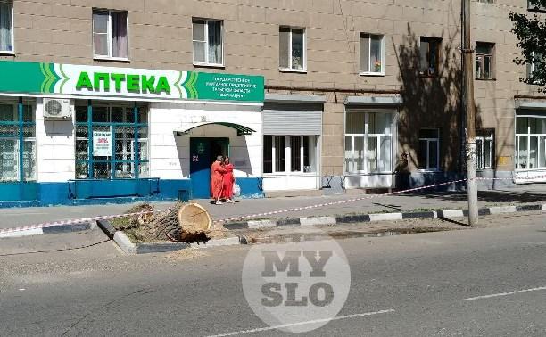 Последствия падения дерева на ул. Болдина в Туле ликвидированы