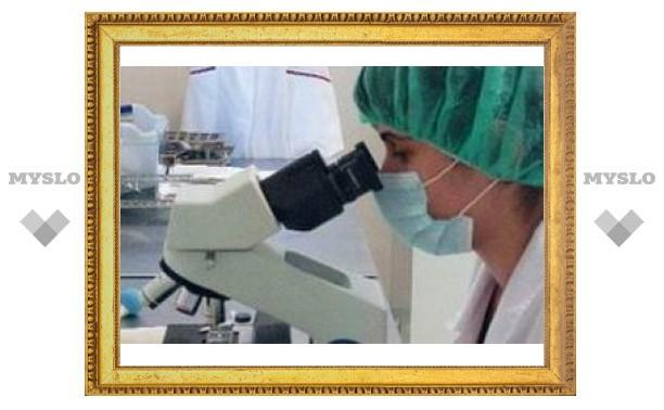 Ученые предотвратили развитие эпилепсии