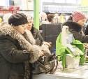 Крупнейшие ритейлеры договорились о заморозке цен на социальные продукты