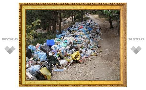Тула вошла в число грязнейших городов России