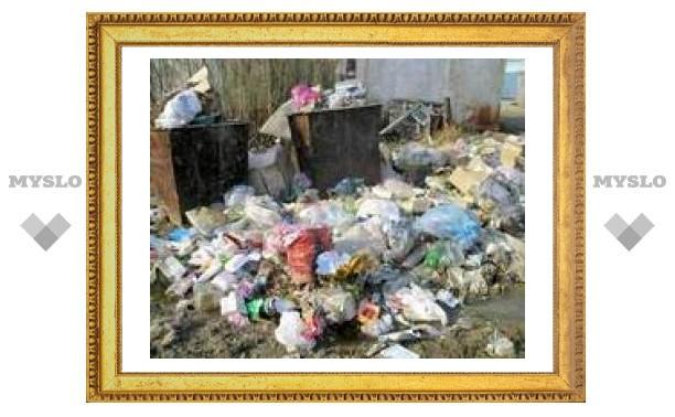 Треть тульских дворов утопают в мусоре