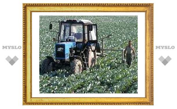 В Тульской области 300 000 сельских хозяйств