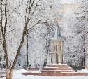 Синоптики: на следующей неделе Тулу завалит снегом