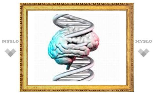 Генетическая мутация улучшает память