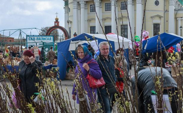 На Куликовом поле прошёл весенний фестиваль «Сад-Палисад»