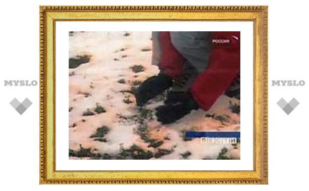 В Омской области выпал оранжевый снег. МЧС едет разбираться